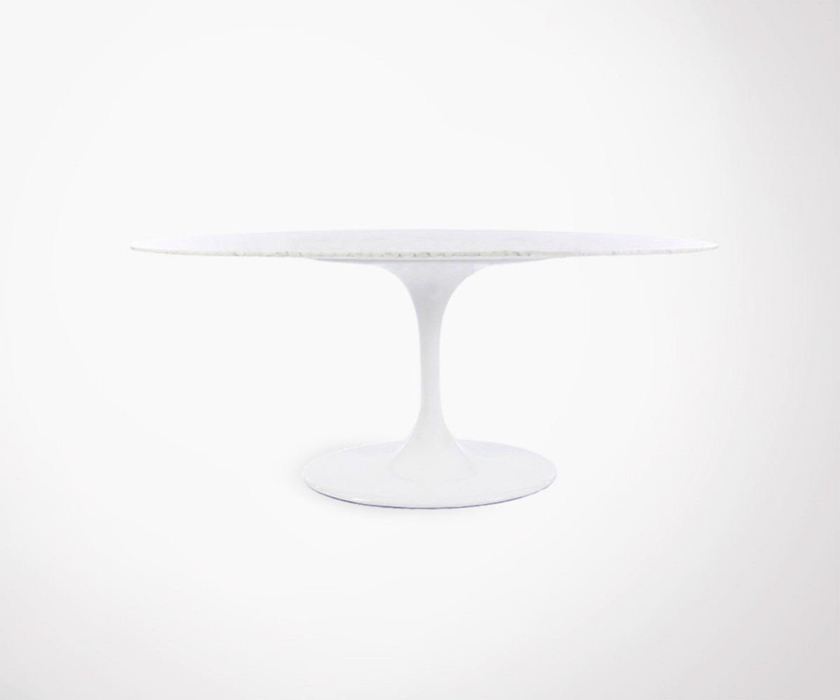 Table Ovale Marbre De Carrare 198x120cm 10 Personnes