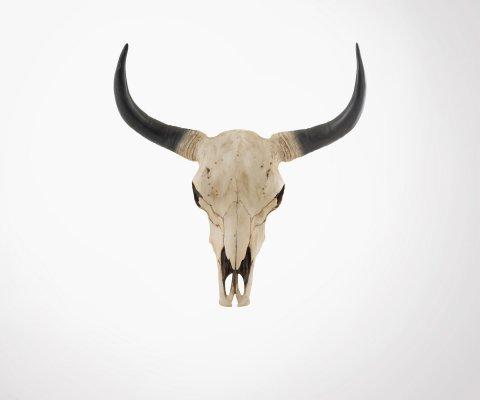 Trophée crâne buffle 65cm style ethnique COWI