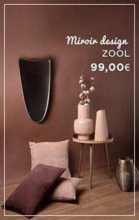 Miroir ZOOL